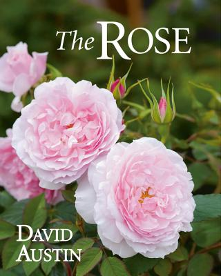 The Rose By Austin, David